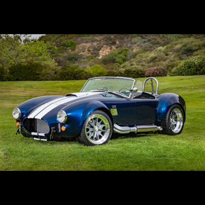 Backdraft Cobra for sale